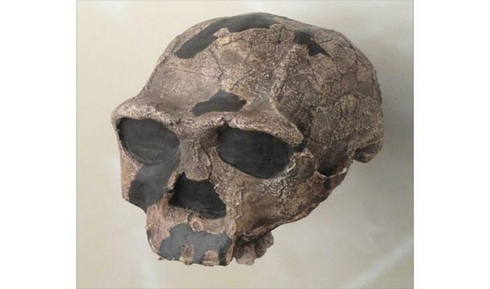 Пятый череп.