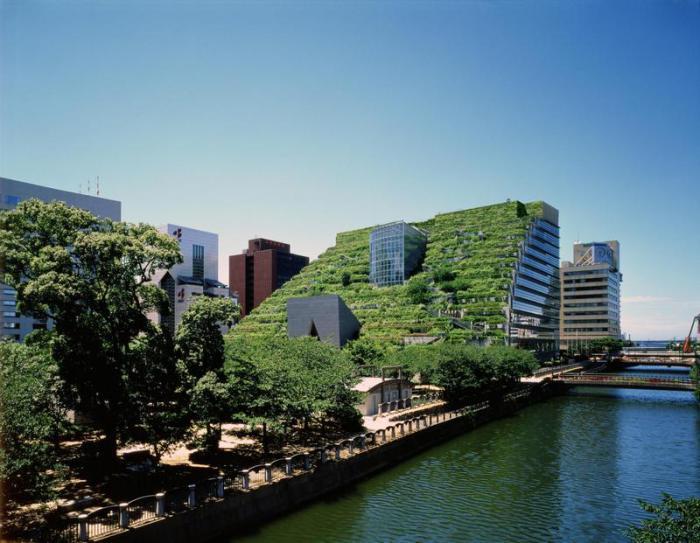 Здания, выращенные природным путем.