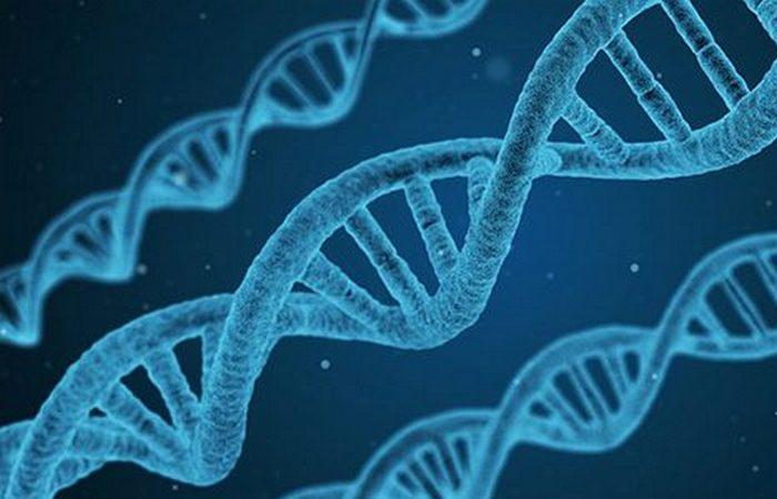 Это конец: биотехнологическая катастрофа.