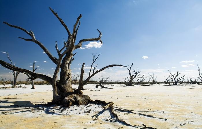 Это конец: изменение климата.