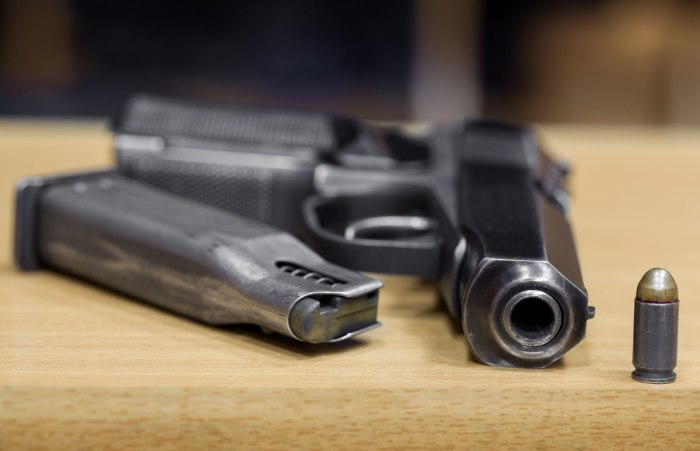 Проверенный годами. |Фото: guns.allzip.org.