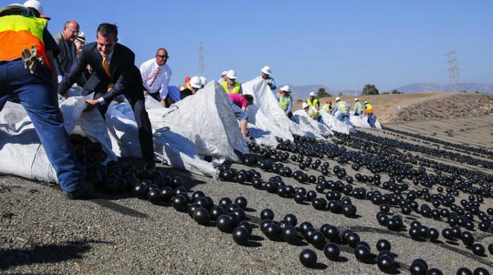 Миллионы шариков. |Фото: twitter.com.