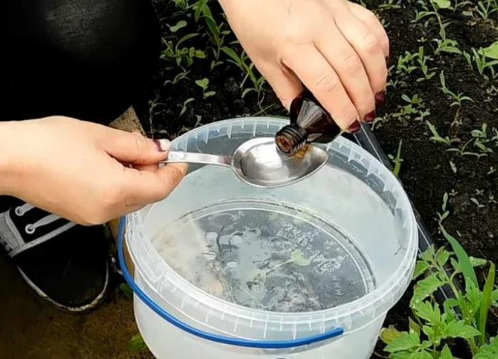 Спирт разводится с водой. ¦Фото: ya.ru.