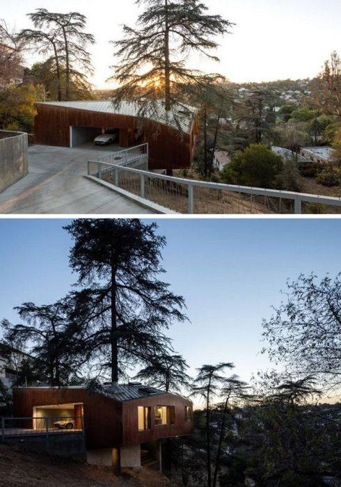 Дом на склоне холма в Лос-Анджелесе, построенный вокруг дерева.