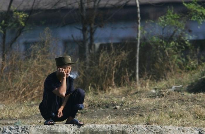 Каннабис в Северной Корее.
