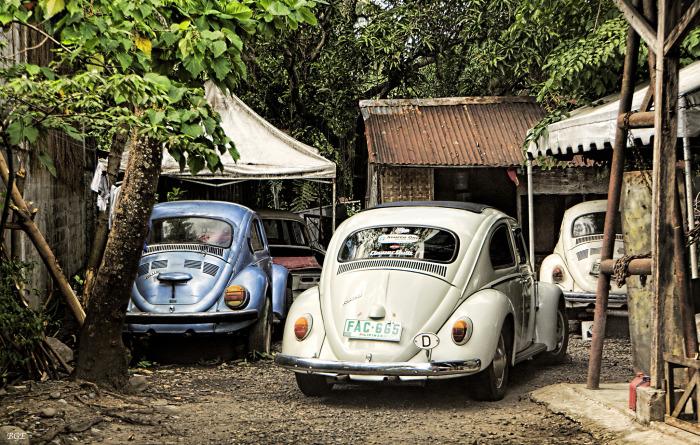 Volkswagen Жук.