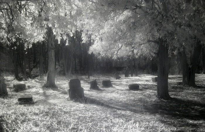 Чикагское кладбище Bachelor's Grove.