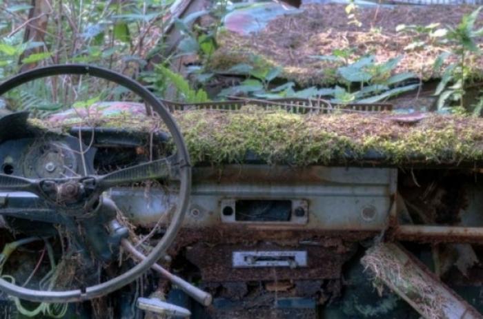 Белгийская свалка раритетных авто.
