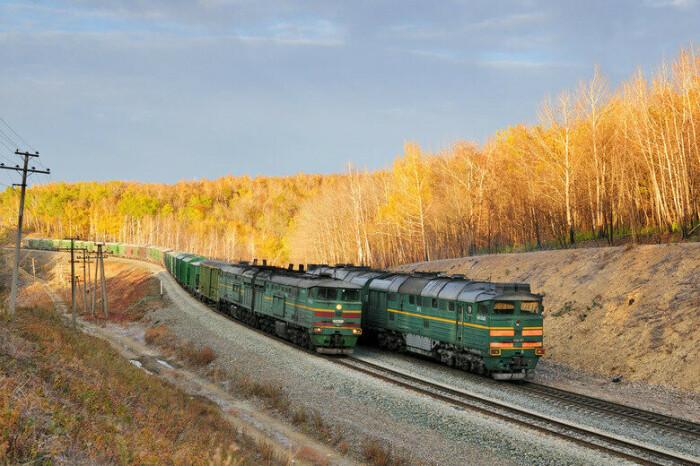 Не стоит ходит между поездами.  Фото: 06237.com.ua.