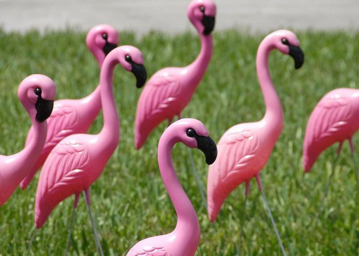 Модная безделушка: пластиковые фламинго.