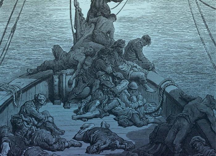 Все дело в планктоне. |Фото: vk.com.