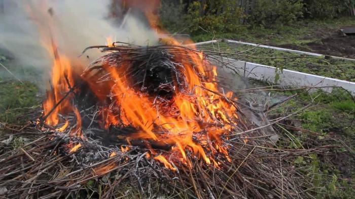 Никакого огня. |Фото: vsluh.ru.