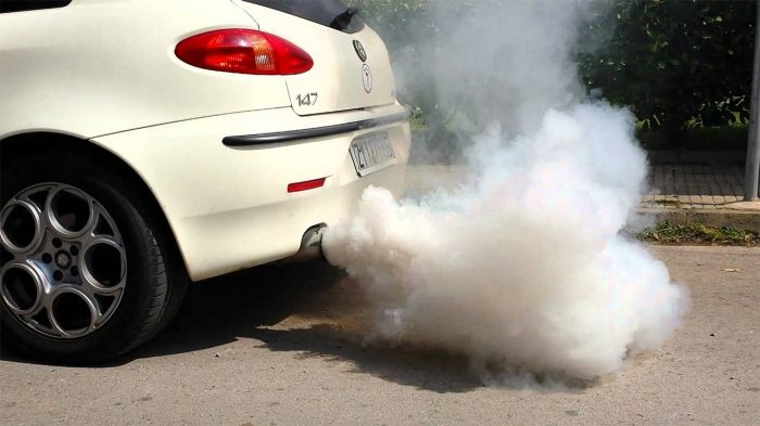 Волноваться нужно, если появился еще и белый дым. |Фото: yandex.ru.