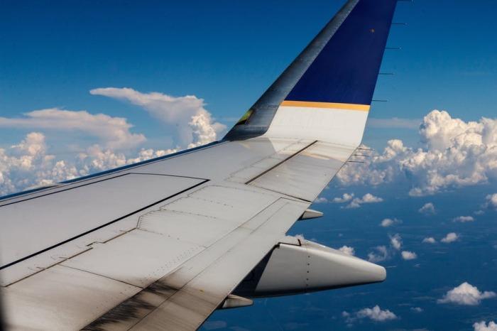 Есть такие почти под каждым крылом. |Фото: pxhere.com.