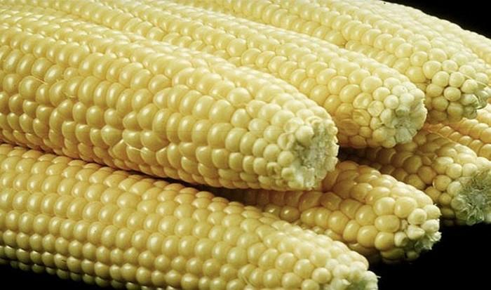 В кофеварке можно сварить кукурузу в початках.