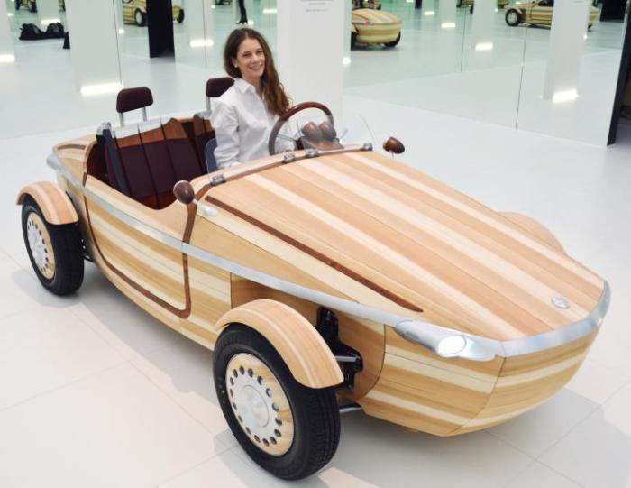 Toyota Setsuna Concept.