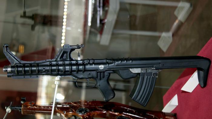 Стреляет лучше, чем АК-74. |Фото: w-dog.ru.