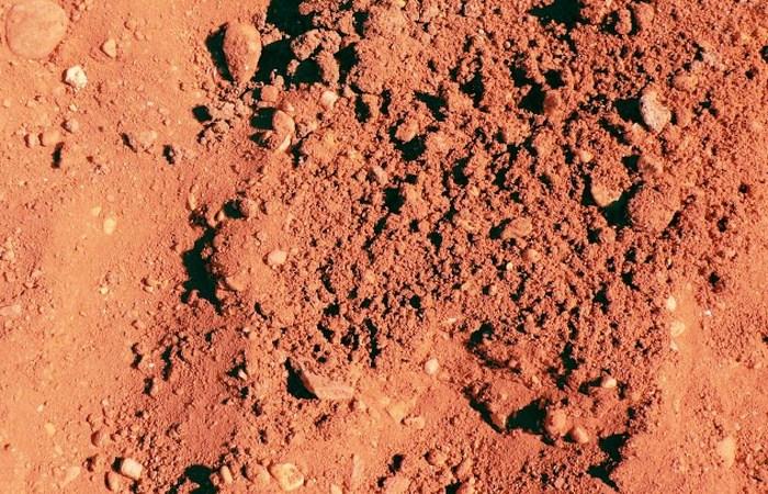 Органика в почве.
