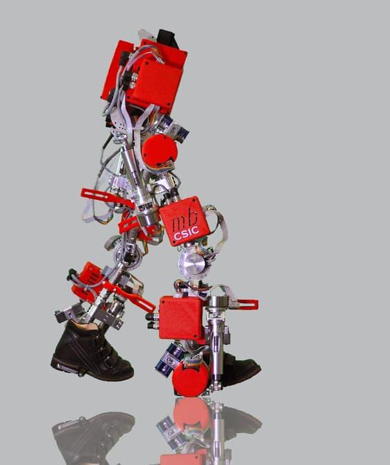 Экзоскелет, который поставит больных детей на ноги