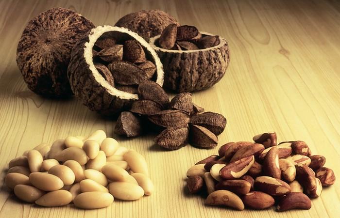 Растение бразильский орех.