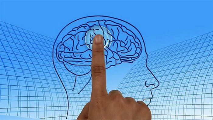 Развенчанный миф: люди используют только 10% своего мозга.