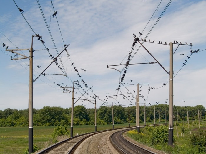 Часть электричества поезд может вернуть.  Фото: profstroimetal-sp.ru.