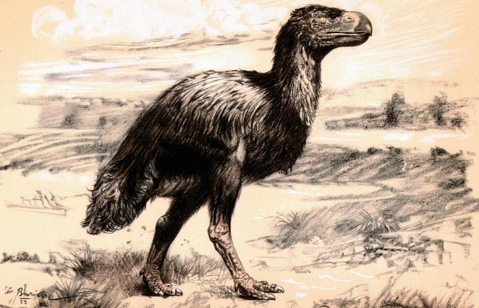 Динозавры строили гнезда и откладывали яйца.