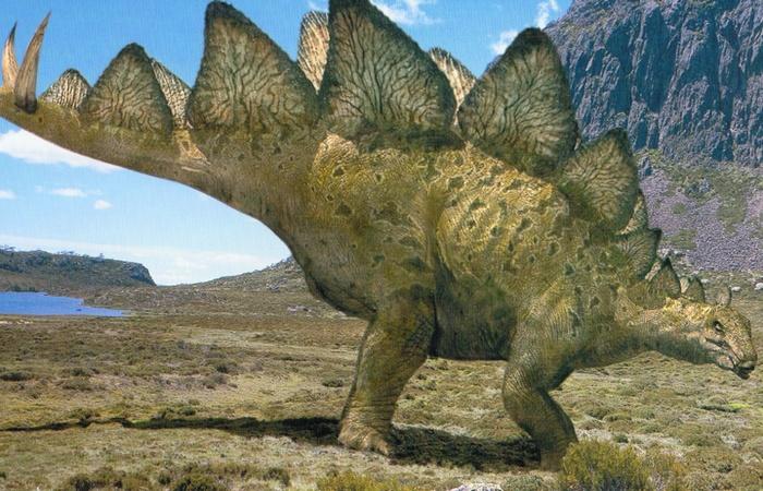 Американский штат Колорадо называют штатом стегозавров.