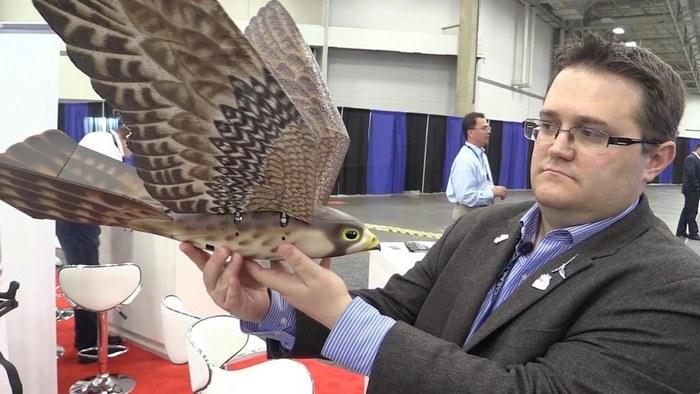 Гражданский дрон-птица для аэропортов. |Фото: mail.ru.