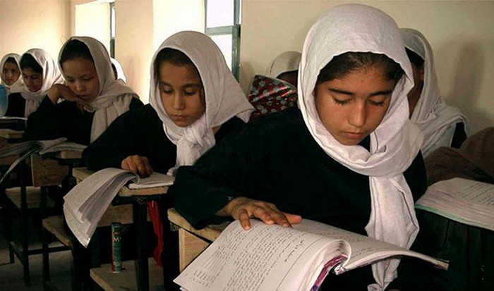 Образование увеличивает оплату труда.