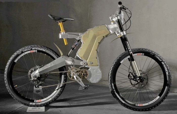 Terminus e-Bike Royal Edition.