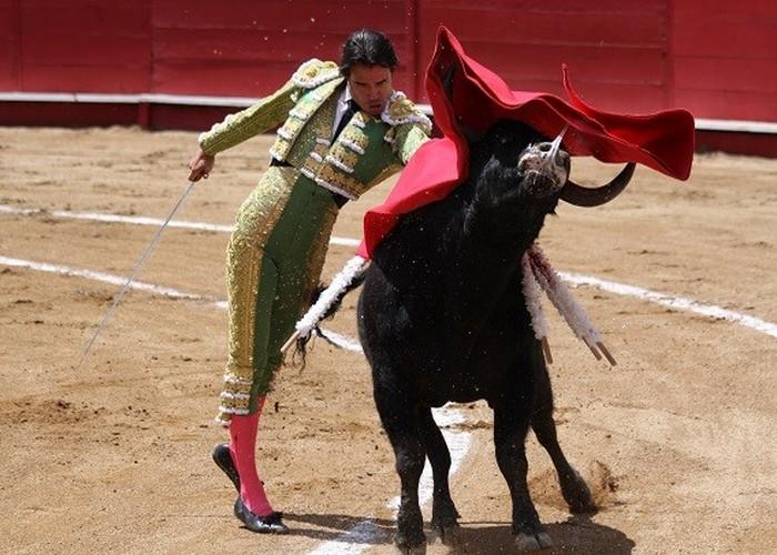 Лженаучный факт: быки сходят с ума от красного цвета.