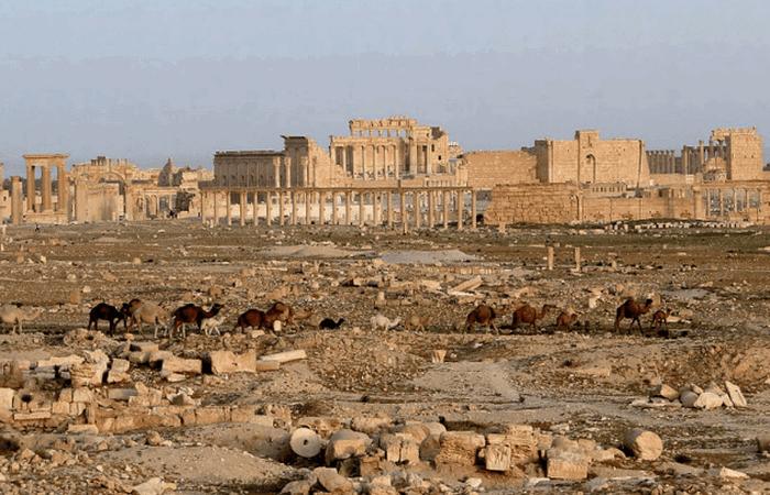 Сирийский город Пальмира./фото: listverse.com