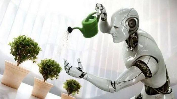 Футуризм сегодня: «домашние» роботы.