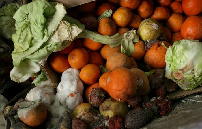 Глобальная проблема: порча продовольствия.