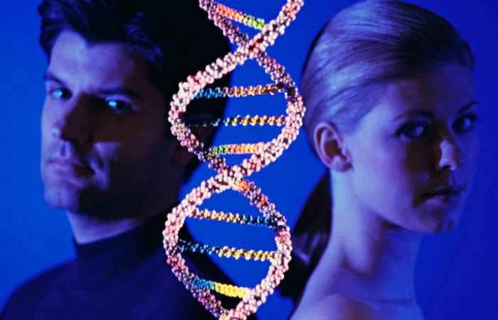 Гормоны и мужские гены.