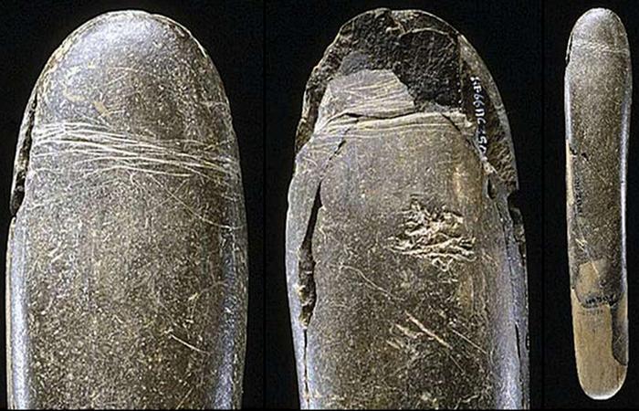 Фаллоимитаторы в каменном веке.