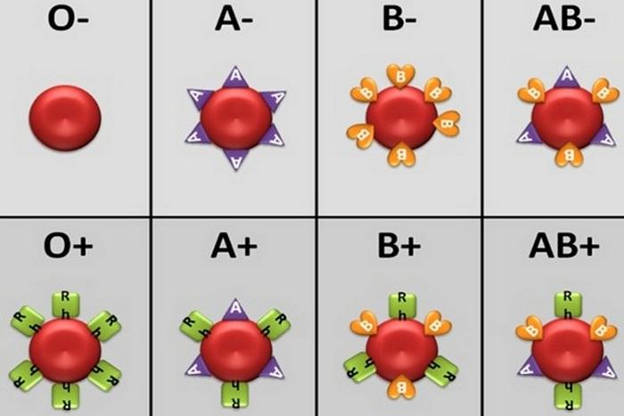 Невероятный факт: 1 группа крови - лакомство для комаров.