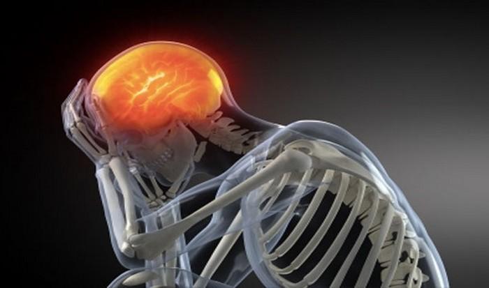 Мозг человека: нет болевых рецепторов.