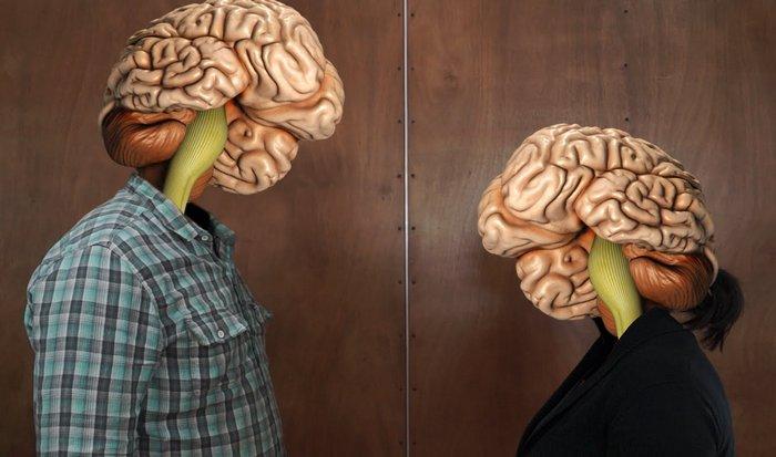 Мозг человека: 2% от общей массы тела.