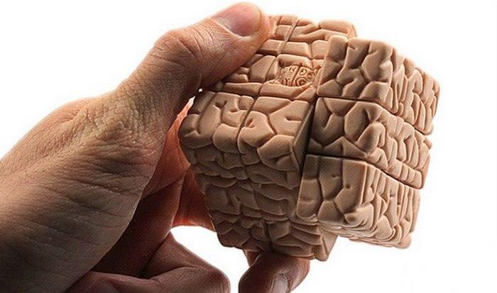 Мозг человека: всего 10% мозга.
