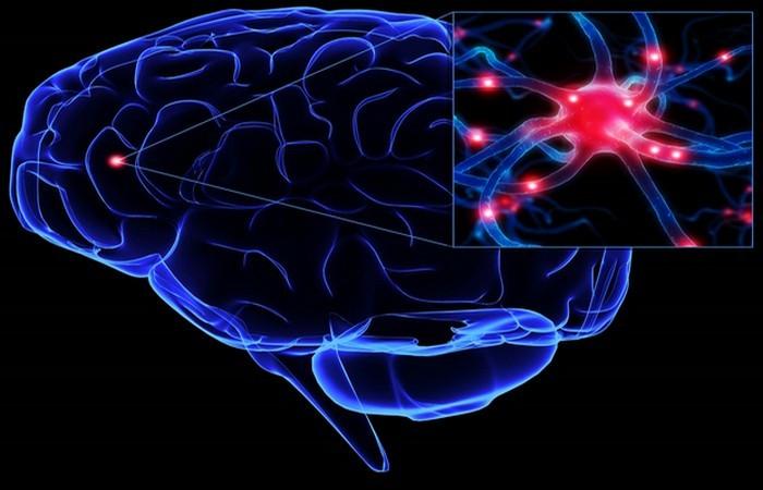 Мозг человека: больше вопросов, чем ответов...