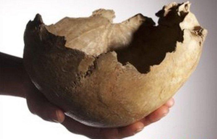 Человеческий череп. Чаша.
