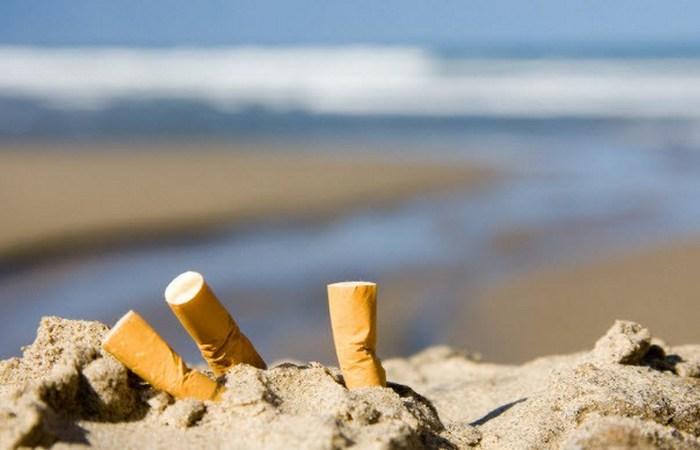 Курение вредит не только человеку.