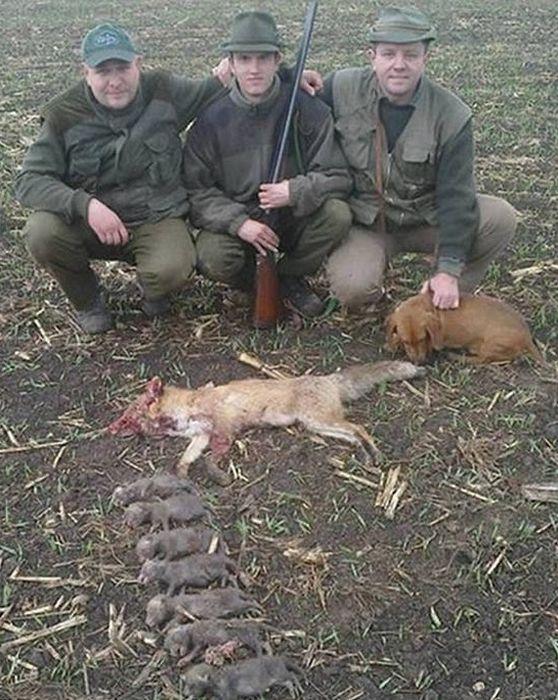 Фотография охотников с мертвой лисой.