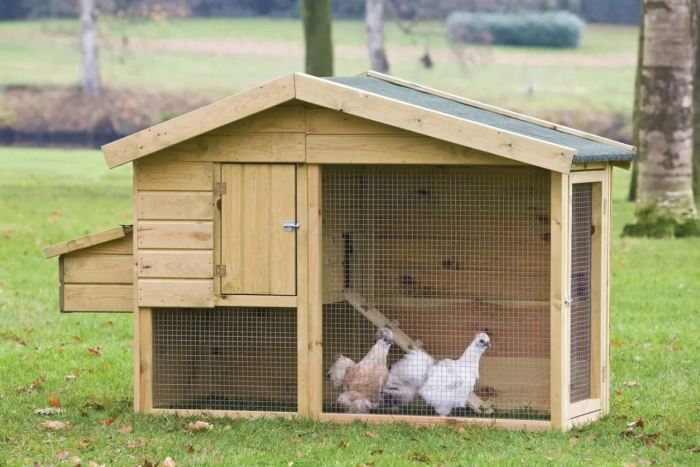 Как долго можно хранить куриные яйца в холодильнике: некоторые склоняются к 3 месяцам