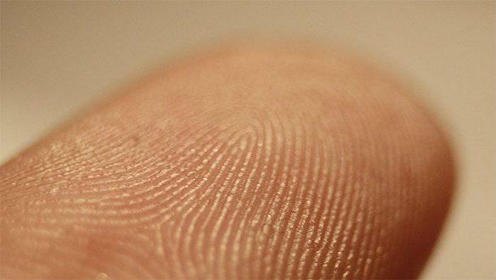 Не до конца понятно: являются ли отпечатки пальцев уникальными.