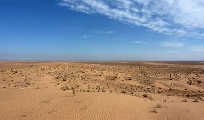 Интересный факт о Земле: пыль Сахары в Амазонке.