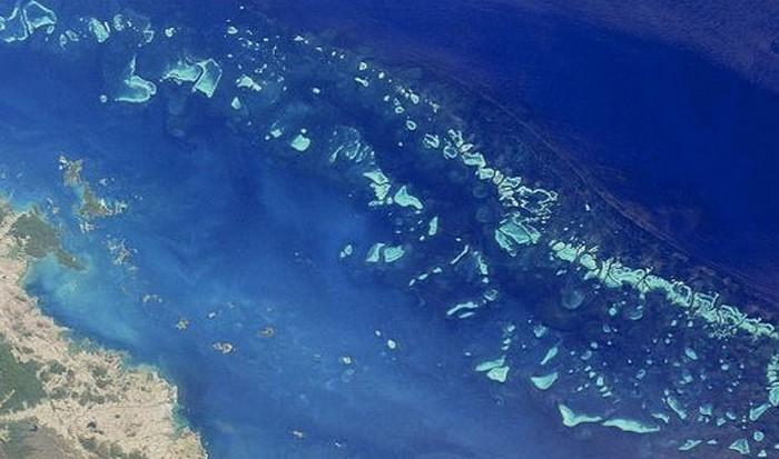 Интересный факт о Земле: Великая китайская стена не видна из космоса.