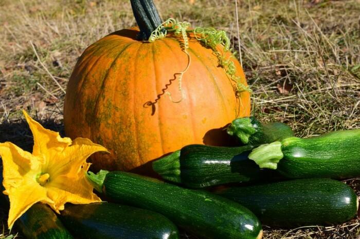 Выбираем семена осторожно.  Фото: gusiyabloni.com.